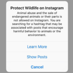Instagram Popup Wildlife